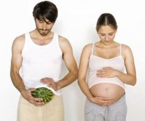Что такое фертильность, и от чего она зависит