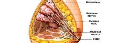 5 признаков фиброзно-жировой инволюции молочных желез, диагностика и лечение