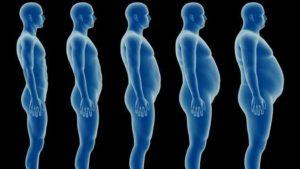 Повышенный дигидротестостерон у женщин и мужчин: причины и лечение