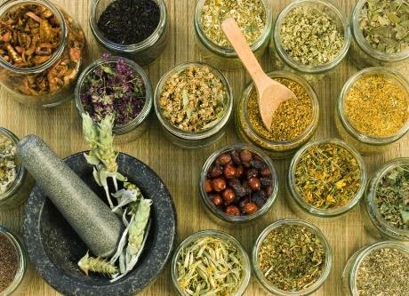 Кровоостанавливающие травы, применяемые в народной медицине для лечения маточного кровотечения