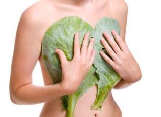 Народные средства против мастопатии: капустный лист, соль и травяные сборы