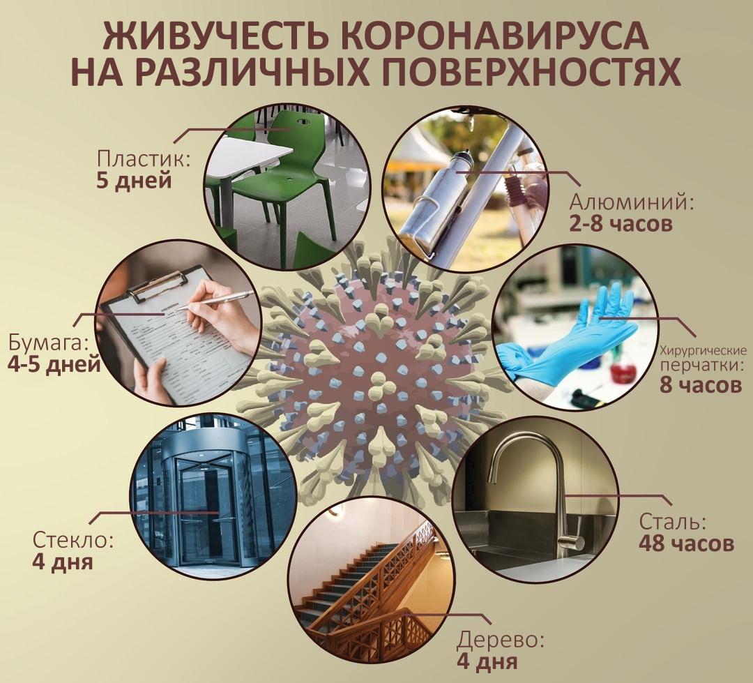 Сколько коронавирус живет на разных поверхностях